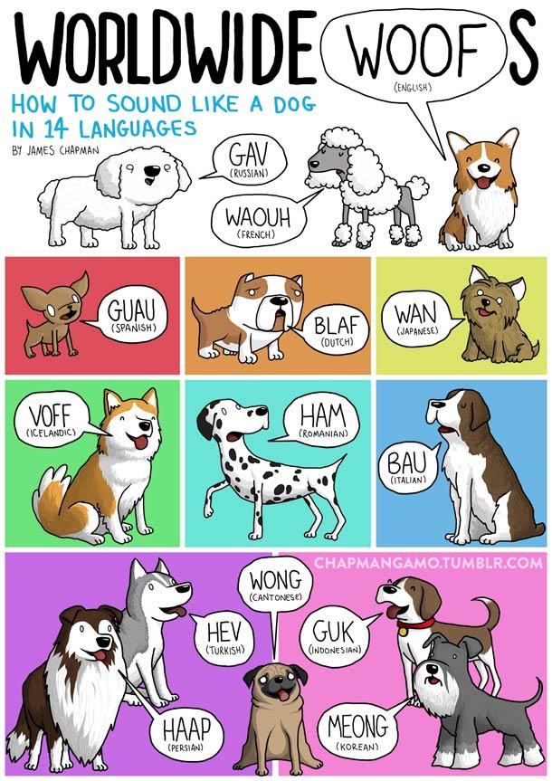 sonidos perros