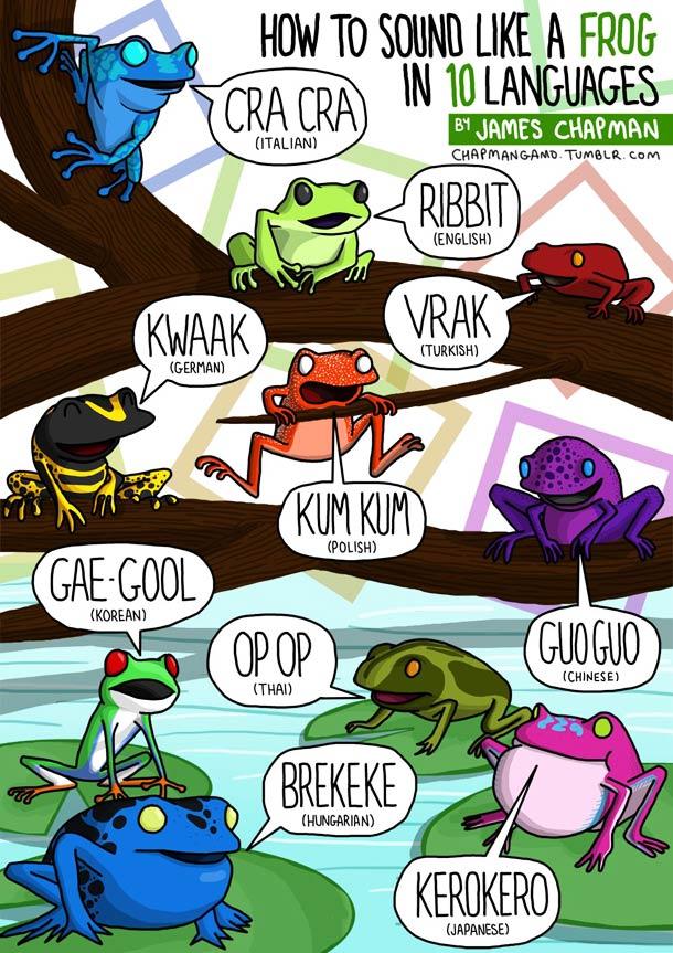 sonido ranas