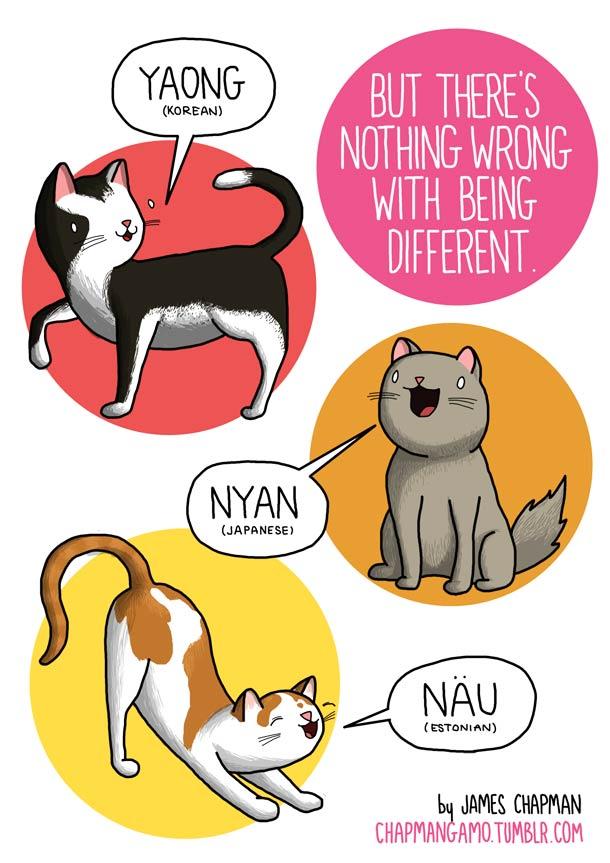 sonidos gatos miau