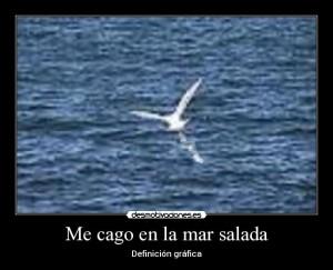me cago en la mar